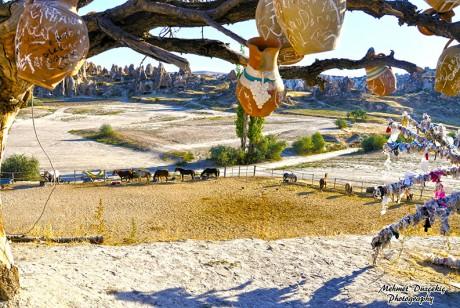 Landscape Cappadocia